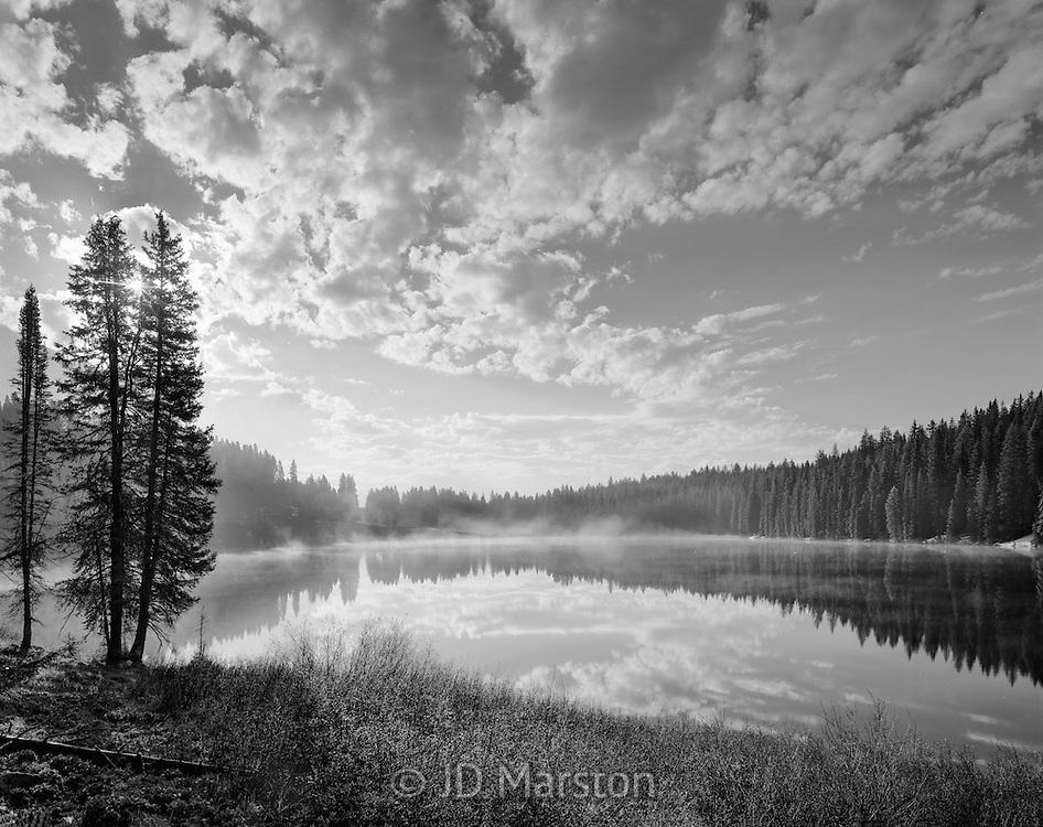 Grand Mesa Morning, Grand Mesa, Colorado, Grand Mesa National Forest