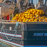 Fishing boats float at anchor in Montery, California.