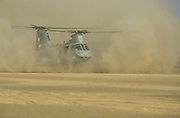 "Camp Rhino, Afghanistan (Dec. 2, 2001) -- A United States Marine Corps. CH-46 ""Sea Knight"" helicopter lands on the desert landing strip code named ""Rhino."" Rhino is a forward-base of operations strategically located inside Afghanistan. U.S. Navy Photo"