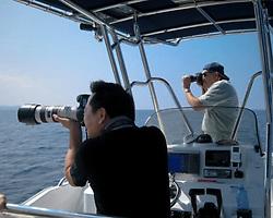 Wildlife photographer Steve Drogin and Masa Ushioda, Kona Coast, Big Island, Hawaii, USA, Pacific Ocean
