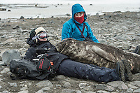Lea and Helen enjoying a peaceful moment with a Elephant Seal cub on the Livingstone Island in Antarctica.