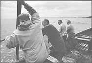 A team of salmon netters fishing bag nets from a coble (boat) at Boddin, Angus<br /> Ref. Catching the Tide 52/00/13a (2nd August 2000)<br /> <br /> The once-thriving Scottish salmon netting industry fell into decline in the 1970s and 1980s when the numbers of fish caught reduced due to environmental and economic reasons. In 2016, a three-year ban was imposed by the Scottish Government on the advice of scientists to try to boost dwindling stocks which anglers and conservationists blamed on netsmen.