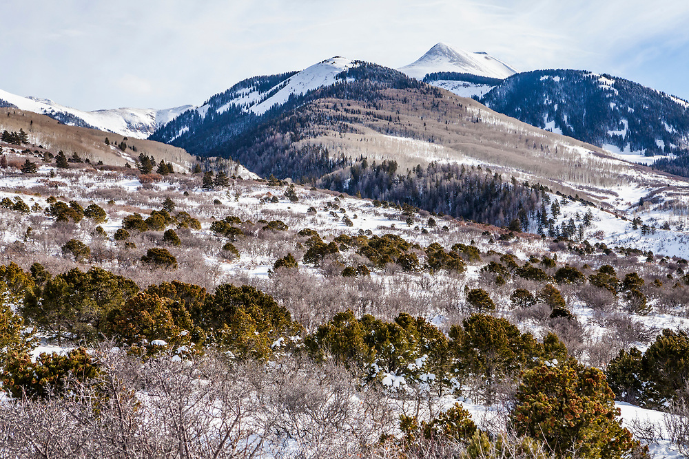 Looking upward toward the La Sal Mountains in southest Utah, USA.