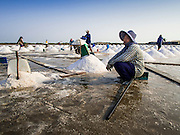 09 MARCH 2015 - NA KHOK, SAMUT SAKHON, THAILAND:  A Burmese migrant worker on a salt farm near Samut Sakhon, Thailand, takes a break during the salt harvest. The coastal provinces of Samut Sakhon and Samut Songkhram, about 60 miles from Bangkok, are the center of Thailand's sea salt industry. Salt farmers harvest salt from the waters of the Gulf of Siam by flooding fields and then letting them dry through evaporation, leaving a crust of salt behind. Salt is harvested through dry season, usually February to April. The 2014 salt harvest went well into May because the dry season lasted longer than normal. Last year's harvest resulted in a surplus of salt, driving prices down. Some warehouses are still storing salt from last year. It's been very dry so far this year and the 2015 harvest is running ahead of last year's bumper crop. One salt farmer said prices are down about 15 percent from last year.   PHOTO BY JACK KURTZ
