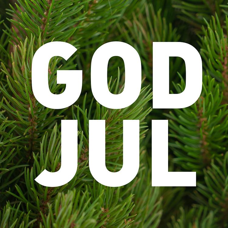 Hvit norsk/svensk tekst «God jul» på bakgrunn av bartre.