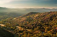 Morning light on tree covered hillside on the western slope of the Sierra, Fresno County, California