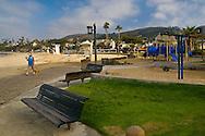 Woman walking her dog holding coffee on boardwalk next to sand at Laguna Beach, Orange County, California