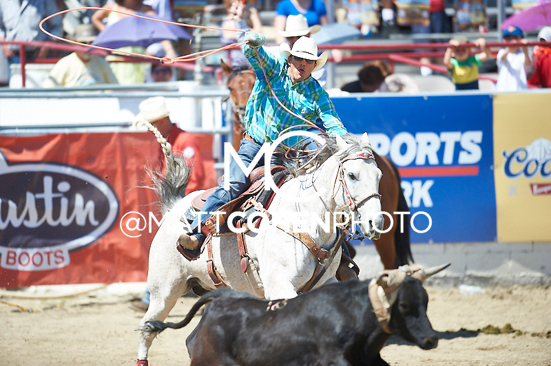 Team roper Shane Erickson of Terrebonne, OR competes at the Redding Rodeo in Redding, CA.<br /> <br /> <br /> UNEDITED LOW-RES PREVIEW<br /> <br /> <br /> File shown may be an unedited low resolution version used as a proof only. All prints are 100% guaranteed for quality. Sizes 8x10+ come with a version for personal social media. I am currently not selling downloads for commercial/brand use.