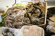 Oysters and crayfish on market stall