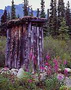 Outhouse with moss roof at Hope Carrithers' Cabin, Dick Proenneke Historic Site, Upper Twin Lake, Lake Clark National Park, Alaska.