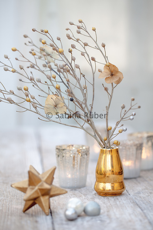 Winter still life with Crambe maritima - sea kale branch, dried hydrangea flower, silvered tea lights and a gold star.