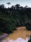 Rio Puyo river flowing in tropical rainforest, Ecuador, South America, 1974