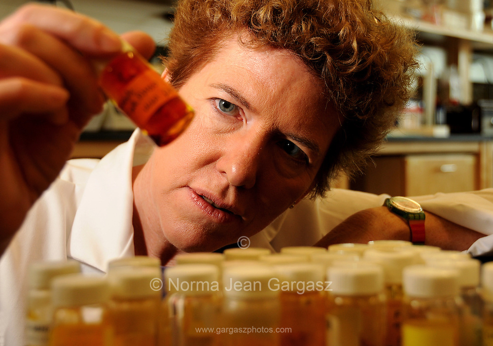 Janet Funk conducts research on ginger and tumeric for their anti-inflamatory properties for the Department of Medicine and College of Medicine at the BIO5 Institute at the University of Arizona, Tucson, Arizona, USA.