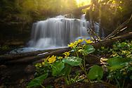 Wagner Falls - Munising, Michigan