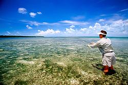 fly fishing for bonefish, flats at Elliott Key, Biscayne National Park, Florida, USA, Atlantic Ocean