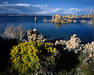 Tufa Towers At Mono Lake, California