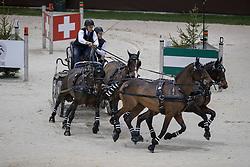 Aillaud Benjamin, FRA, Atomo, Donald, E Ufano, El Rey<br /> FEI World Cup Driving<br /> CHI de Genève 2016<br /> © Hippo Foto - Dirk Caremans<br /> 11/12/2016