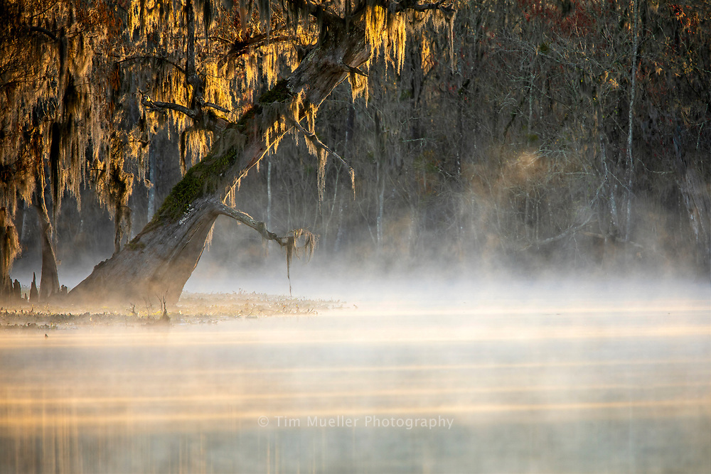 Mist rises from Blind River as the sun rises on a winter morning in St. James Parish, Louisiana.