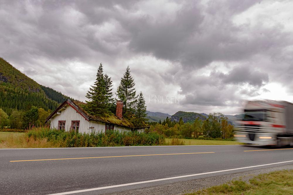 Old house next to Hemsedalsvegen (Rv52) in Hemsedal (Viken, Norway) with turfed roof growing Norway spruce.