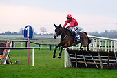 Fairyhouse Races - New Years Day 2020