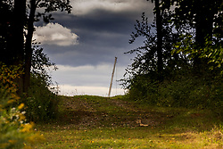 A construction cranes boom is visible from an opening in a wooded path.