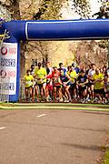 Sketchers Spring into Shape Race 1