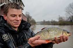 © London News Pictures. 28/02/2014. Worcester, UK.  A member of the Environment Agency holding a roach fish rescued after being trapped on Worcester racecourse when flood waters subsided. Fish, including roach, perch, bream and pike, some weighing over 10lbs, were caught using a large hand net. Photo credit: LNP
