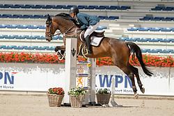 Schormann Christine, Malibou S<br /> Nationaal Kampioenschap KWPN<br /> 5 jarigen springen final<br /> Stal Tops - Valkenswaard 2020<br /> © Hippo Foto - Dirk Caremans<br /> 19/08/2020