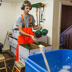 Maverick Beal (owner Ralph Smith's grandson) boxing 2 pund bags of processed mussels at Moosabec Mussels, Inc. in Jonesport., Maine.