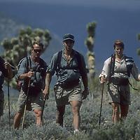Endurance runners in Nevada's Spring Mountains near Las Vegas.