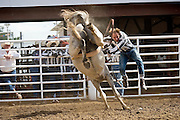 17 OCTOBER 2004 - ANGOLA, LOUISIANA: A convict is bucked off in the bareback riding in the rodeo arena at the Louisiana State Penitentiary in Angola, LA, at the Angola Prison Rodeo, Oct. 17, 2004. The Angola Prison rodeo was started in 1964 and has become one of the largest tourist attractions in southern Louisiana. The rodeo is held every Sunday in October and two weekends in April, in addition to the rodeo there is an inmates arts and crafts sale and a kiddie land for children. The state penitentiary in Angola sits on 18,000 acres bordered on three sides by the Mississippi River has more than 5,100 inmates and 1,800 employees. It is the largest state prison in Louisiana. It got its name from a pre-civil war plantation that used to be on the same site and used slaves imported from Angola.  PHOTO BY JACK KURTZ