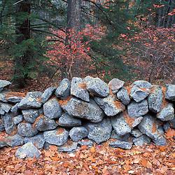A stone wall next to Sheepboro Rd. near Blue Job Mountain.  Farmington, NH