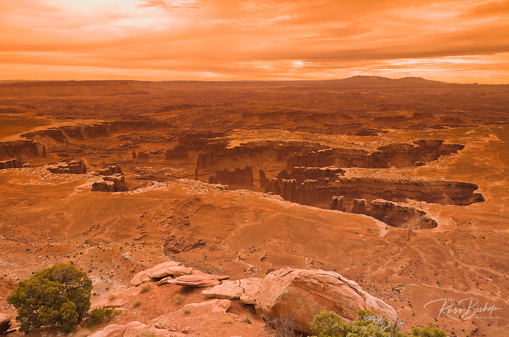 The White Rim from Grand View Point, Island in the Sky, Canyonlands National Park, Utah