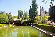 Gardens and pond of the Partal palace, Alhambra, Granada, Spain