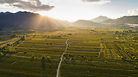 Aerial view of Jezero valley near the city of Vrgorac in Dalmatia. It's the largest vineyard in Croatia.
