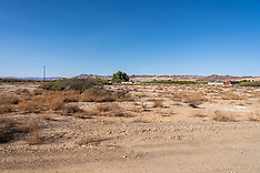 Sunny Sands and Cholla 29