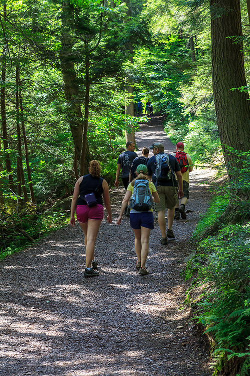 Benton, PA, USA - June 15, 2013: Trail hikers in Pennsylvania's Ricketts Glen State Park.