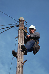 Electrical engineer working at top of telegraph pole,
