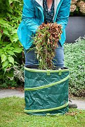 Putting leaves into pop up garden bin