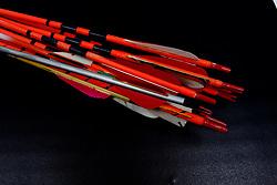 Archery arrows for a bow.