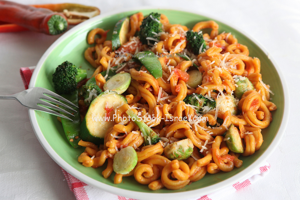 A plate of Macaroni pasta with tomato sauce