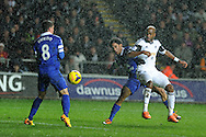 Swansea city score their equaliser through an own goal  to make it 1-1 as a Dwight Tiendalli © shot hits Everton's Bryan Oviedo (8) and goes into the back of the net. Barclays Premier league, Swansea city v Everton at the Liberty Stadium in Swansea,  South Wales on Sunday 22nd Dec 2013. pic by Andrew Orchard, Andrew Orchard sports photography.
