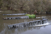 Weir on the River Brent on 4th December 2020 in London, United Kingdom. This area is an offshoot of the Grand Union Canal and provides an very healthy habitat for many species of birds.