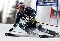ALPINE SKIING - WORLD CUP 2010/2011 - BEAVER CREEK (USA) - 05/12/2010 - PHOTO : ALESSANDRO TROVATI / PENTAPHOTO / DPPI - MEN GIANT SLALOM - Aksel Lund Svindal (nor)