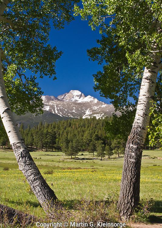 14,255 ft. Longs Peak as seen from Upper Beaver Meadows, Rocky Mountain National Park.  Colorado, USA.