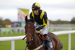 Lough Legend ridden by jockey Danny Cook competes in the Bet365 Novices' Hurdle