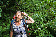 A female hiker pulls back her hair to navigate dense vegetation along the trail to Spider Meadows, Wenatchee National Forest, Washington.