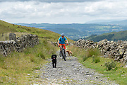 A male mountain biker, accompanied by two dogs, cycling along a footpath on the 13th June 2019 near Kentmere in the Lake District in the United Kingdom.