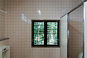 window view of garden seen from a male public toilet room Japan Kyoto