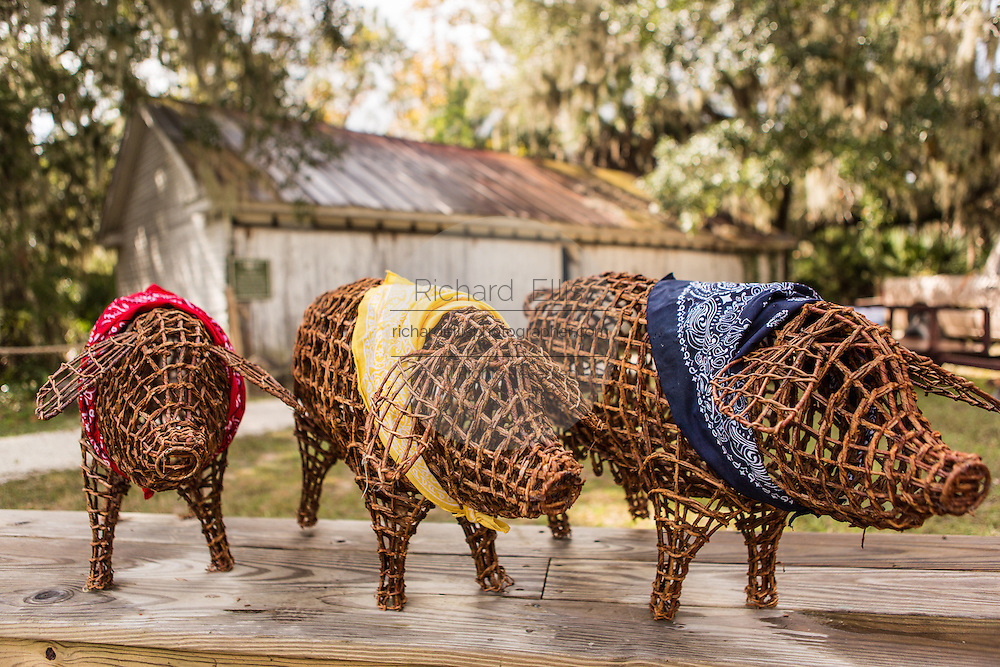 Decorative pigs and old shed at Honey Horn Plantation on Hilton Head Island, SC